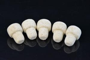 5 sztuk korek z korka grzybek 19mm
