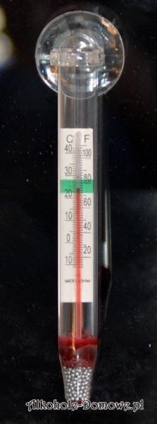 Termometr z przyssawką