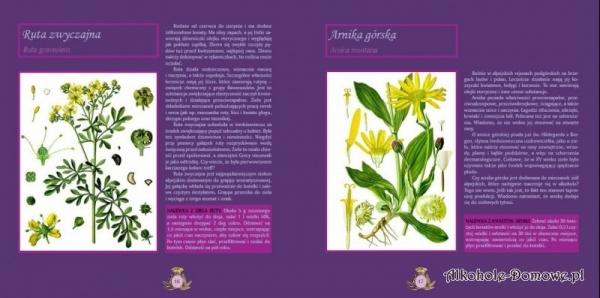 Książka - Grappa i zapach alpejskich ziół - Julian Hombek